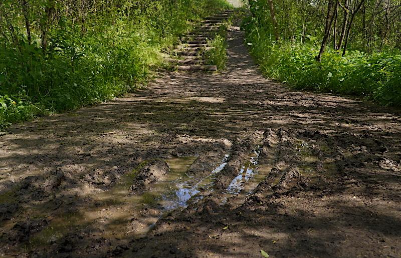 Foto von Wanderung 1 (Foto: E. Schön)